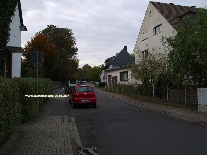 Böcklerstr.
